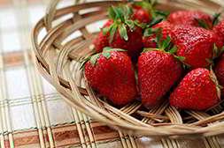Из чудо ягодницы произрастает сорт альбион