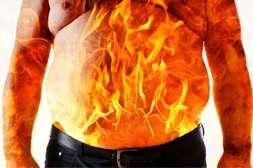 Состав RB diet system обеспечивает активное жиросжигание.
