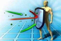Лекарство Пилорис держит иммунитет в боевой готовности.