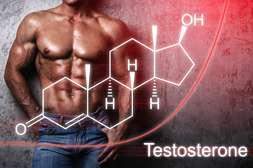 С капсулами Простатодинон устраняется гормональный дисбаланс.
